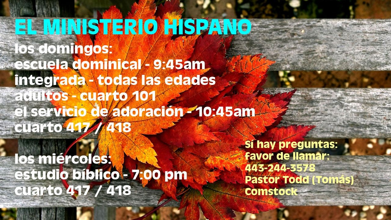 Spanish Ministry Schedule